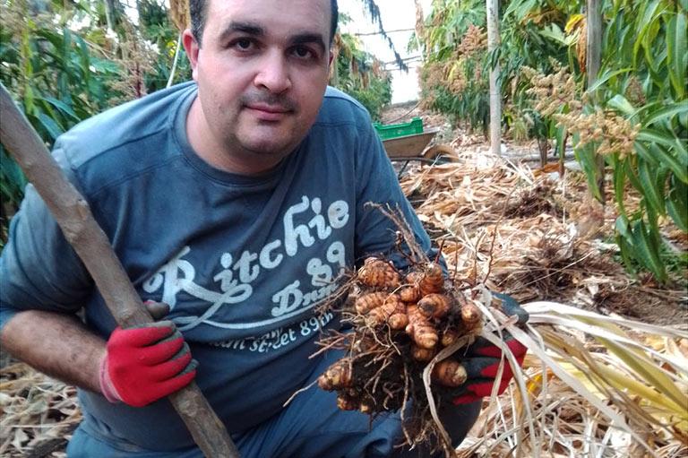 Producteur de mangue et papaye bio David Ruiz