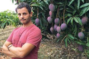 Organic avocado and mango producer Jesus Manuel Villena