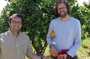Producers of organic oranges César & Juan Salamanca Ocaña