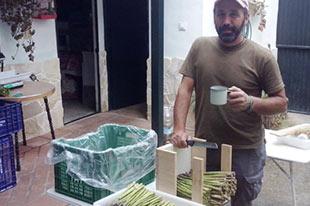 Organic grain and vegetable producer Victorio Domínguez Muñoz