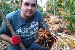 Organic mango and papaya producer David Ruiz