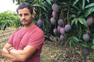 Organic avocado and mango producer Jesús Manuel Villena