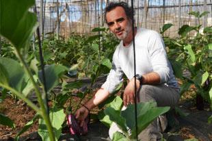Biologische groente- en fruitproducent Constantino Ruiz Dominguez aan het werk in zijn tunnels